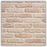 Saumon - Plaquettes de brique Granulit 20-30