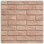 Salmon - Decorative brick collection Interfix